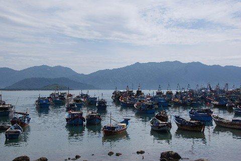 Fishing boats in Nha Trang